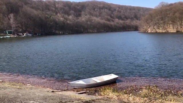 15-річний підліток потонув в озері у Новому Роздолі