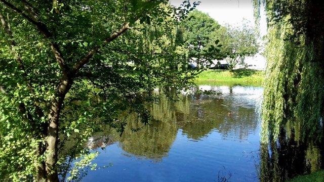 Цього року у Львові очистять шість водойм