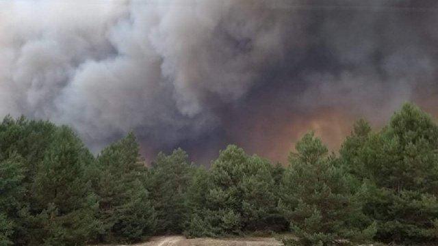 На полігоні під Києвом сталась масштабна пожежа