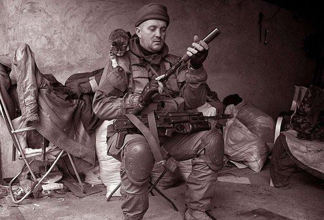 «Гібридна війна» і хвороби української еліти