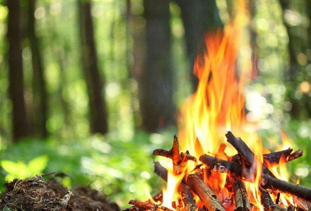 Відпочинок із вогнем