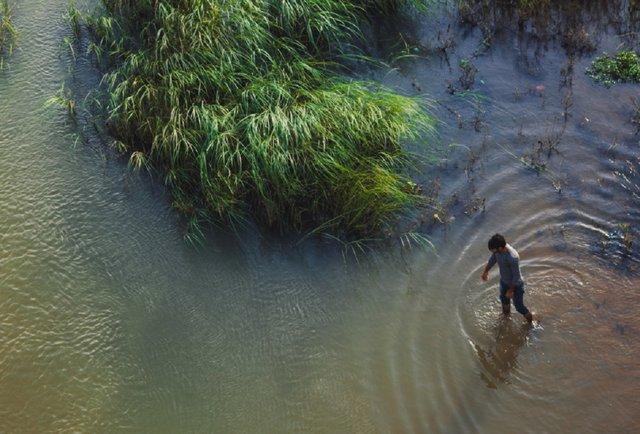 Малими кроками до великої екології
