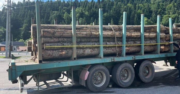 На хабарі затримали лісника Сколівського військового лісгоспу - ZAXID.NET