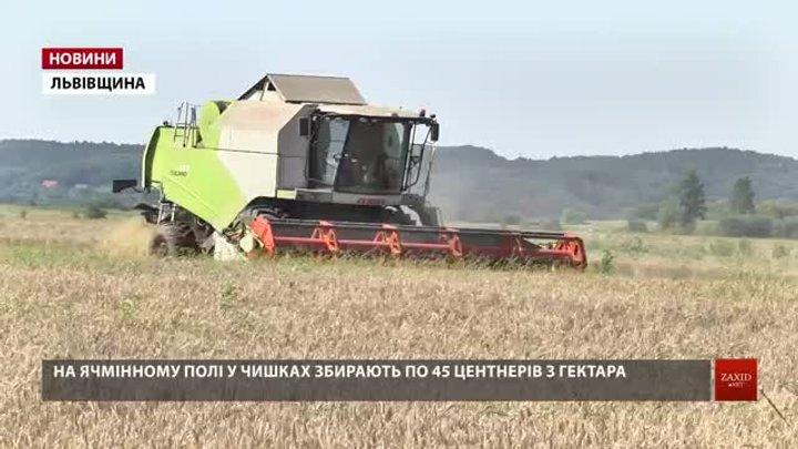 Аграрії Львівщини зібрали з полів 80% зернових культур