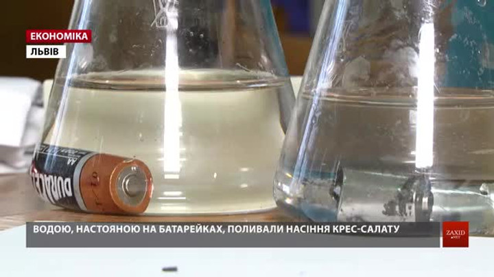 Львівські науковці з'ясували площу землі, яку забруднює одна батарейка