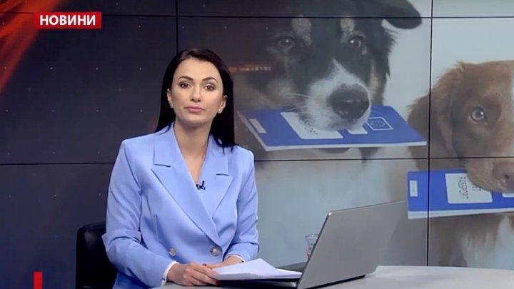 Головні новини Львова за 19 червня