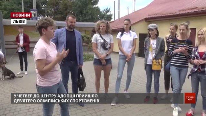 Львівські олімпійці допомагали бездомним собакам знайти родини