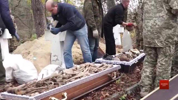 На Львівщині перепоховали 72 бійців Першої світової війни