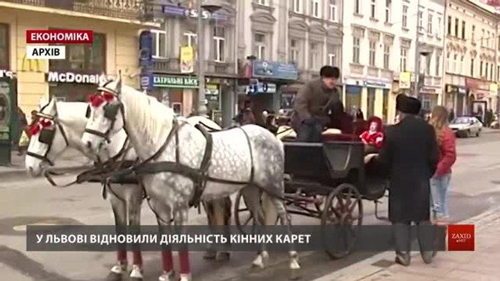 У центральній частині Львова відновили діяльність кінних карет
