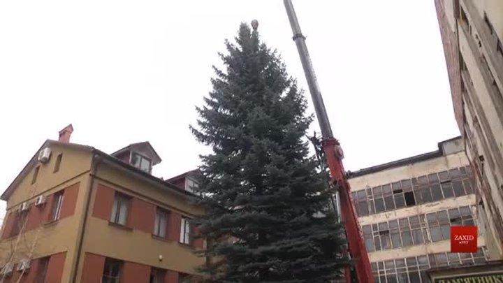 Цьогоріч у центрі Львова встановлять сріблясту ялинку з території колишнього заводу «Кінескоп»