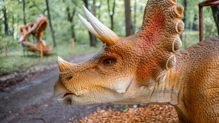 У парку розваг УРУРУ біля Львова можна побачити велетнів-динозаврів